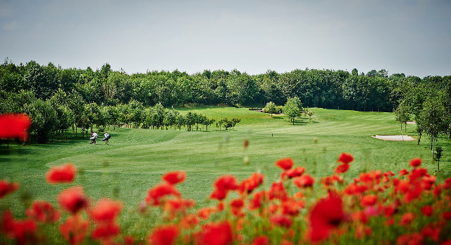 le golf gaudet luce en angleterre